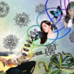 7 Musical Transformation